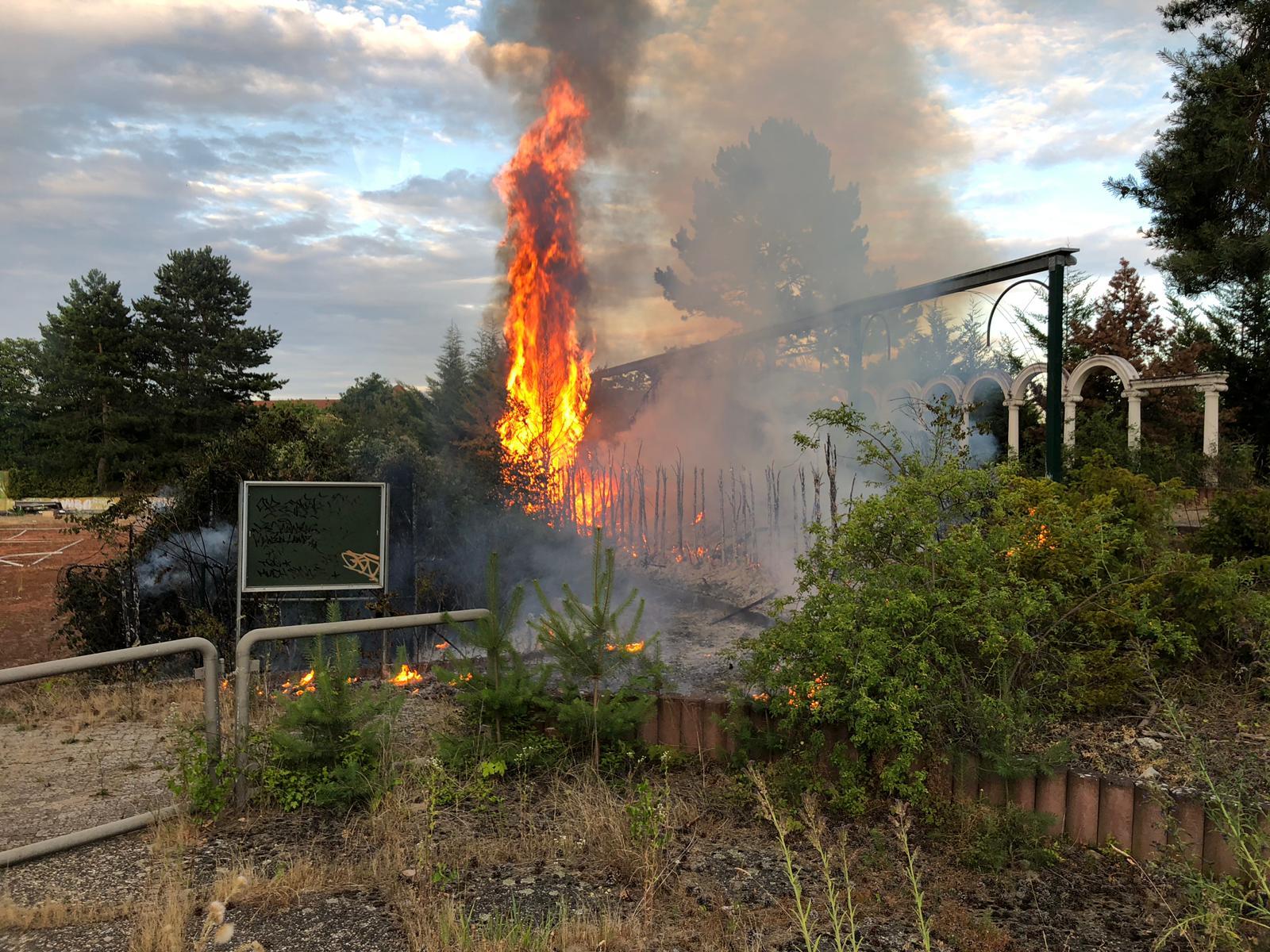 B2.9 – Flächenbrand groß